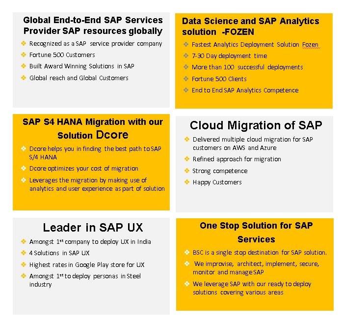 SAP Services by Globalbsc