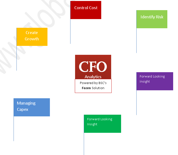 CFO Analytics by Globalbsc